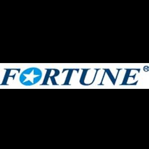 FORTUNE TIRES